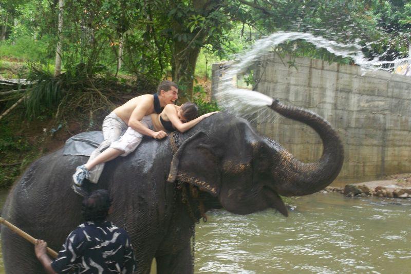 Koupel od slona nedaleko Pinewalla
