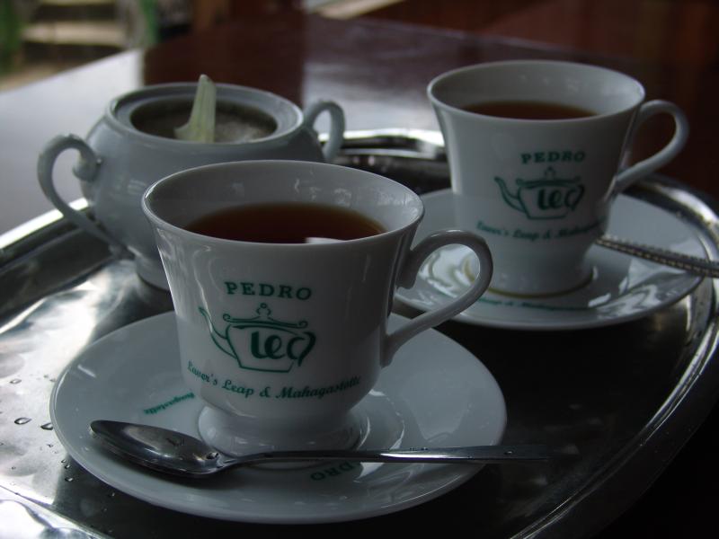 Vzorek čaje v Pedro Tea Factory