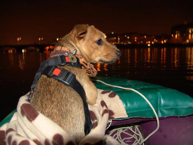 Vánoční plavba Prahou roku 2010 s Aidou coby plavčíkem.