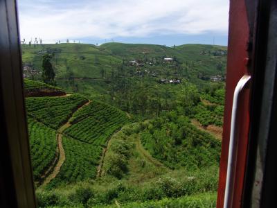 Výhled z vlaku směr Hatton, Srí lanka